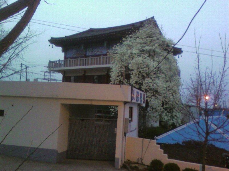 ZPHOTO_0068.jpg